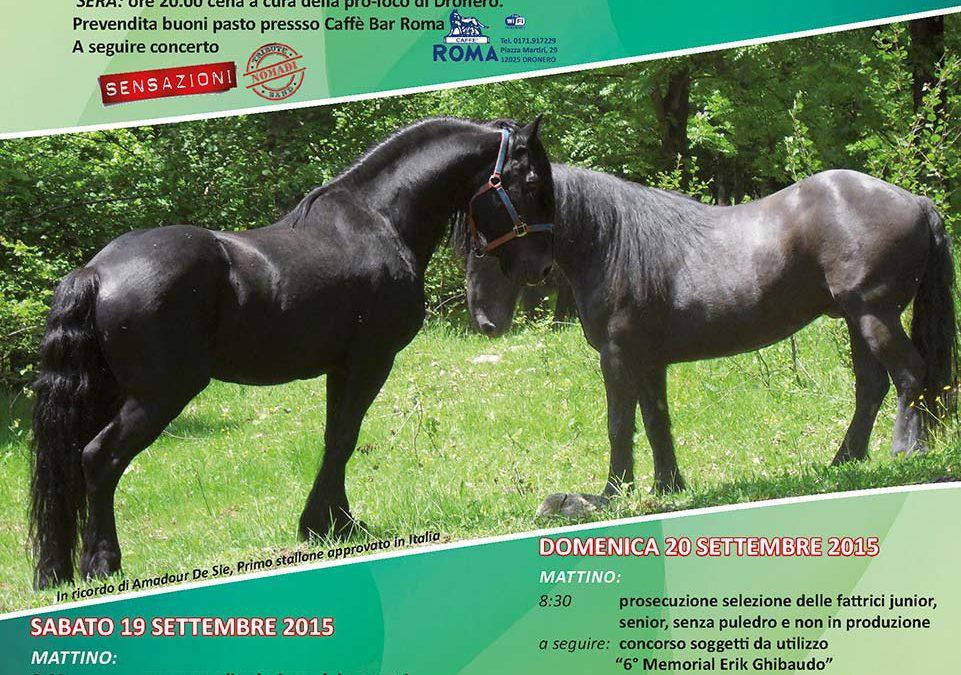 Mostra del Cavallo di Merens 2015